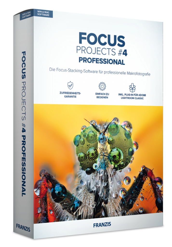 FOCUS projects professional